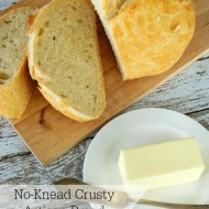 No-Knead Crusty Artsian Bread