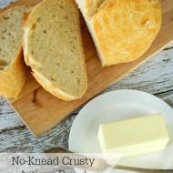No-Knead Crusty Artsian Bread