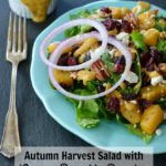 Autumn Harvest Salad with Creamy Pumpkin Dressing