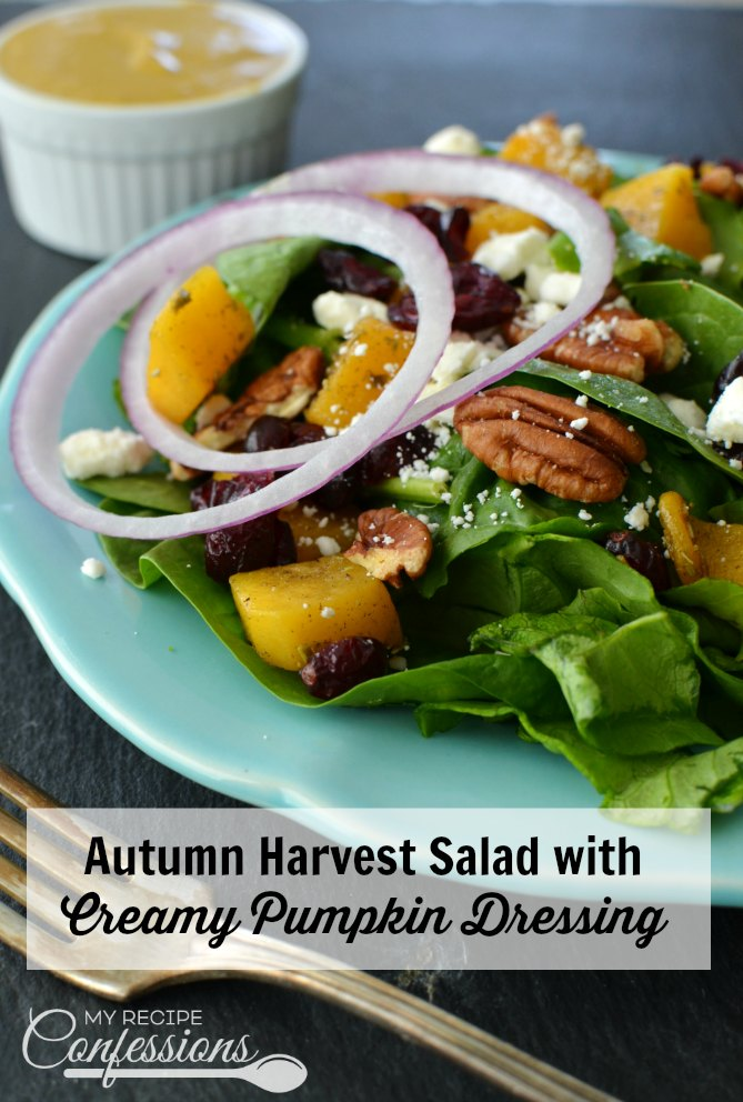 Autumn Harvest Salad with Creamy Pumpkin Dressing is full of all the autumn flavors we love and crave! This salad is packed with butternut squash, dried cranberries, pecans and so much more. The creamy pumpkin dressing recipe is pure magic and really makes this salad pop!