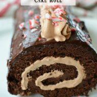 Mint Chocolate Cake Roll
